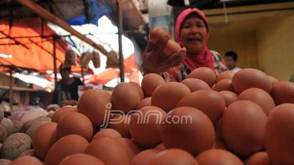 Jelang Hari Ayam dan Telur Nasional, Mahasiswa Unair Bagikan 2.000 Telur Ke Warga Surabaya - JPNN.com Jatim