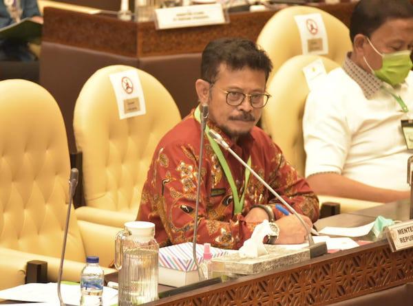 Komisi IV DPR RI Apresiasi Penelitian Eucalyptus Kementan