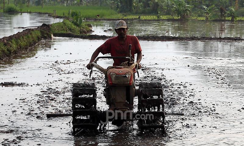 Bupati Jember Minta Pupuk Indonesia Tingkatkan Produktivitas Petani Lewat Agro Solution - JPNN.com